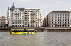 Sightseeing amphibian bus Danube Stock Images