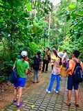 Sightseeing in Bukit Batok nature park, Singapore Royalty Free Stock Images
