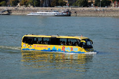 Sightseeing bus in the Danube River Stock Image