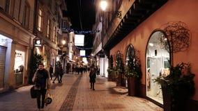Sightseeing de passeio dos povos Rue de Hallebardes iluminada filme