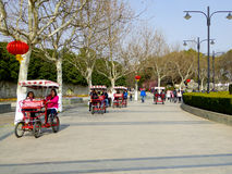 Sightseeing double bicycles Stock Images