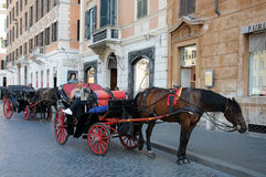 Sightseeing in a horse drawn carriage Royalty Free Stock Photography