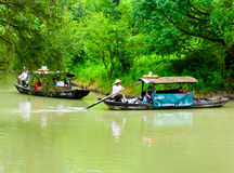 Sightseeing sculling boats rowing on a river. Fishermen rowing oar propelled boat on a river inside Xixi Wetland Park Hangzhou China Royalty Free Stock Images