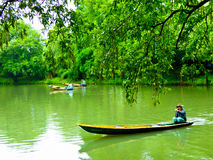Sightseeing sculling boats rowing on a river. Fishermen rowing oar propelled boat on a river inside Xixi Wetland Park Hangzhou China Stock Photos