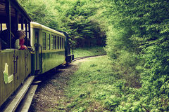 Sightseeing Train in Miskolc. Hungary going through green spring forest Stock Images
