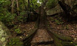 Sigiriya Lion Rock Royalty-vrije Stock Foto's