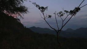 SIGIRIYA, SRI LANKA - FEBRUAR 2014: Ansicht von Sigiriya-Natur Sigiriya ist ein alter Palast, der im zentralen Matale-Bezirk gele stock video