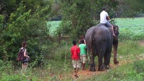 SIGIRIYA, SRI LANKA - FEBRUAR 2014: Bemannen Sie und ein Kind, das einen Elefanten in Sigiriya reitet Diese alten Elefanten sind  stock video