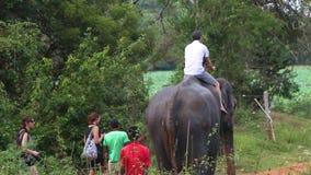 SIGIRIYA, SRI LANKA - FEBRUAR 2014: Bemannen Sie und ein Kind, das einen Elefanten in Sigiriya reitet Diese alten Elefanten sind  stock footage