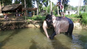 SIGIRIYA, SRI LANKA - FEBRUARY 2014: Elephant in  stream with its Mahout on its back. It�s common practice to refresh elephants. After a day�s work in the stock footage