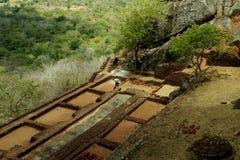 Sigiriya, Sri Lanka - la roccia del leone, fortezza della roccia Immagini Stock Libere da Diritti