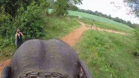 SIGIRIYA, SRI LANKA - MARZO 2014: Vista aerea del giro dell'elefante con le orecchie di sbattimento e della testa, catena intorno archivi video