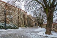 Sigismund门在一个冬天早晨,对布拉索夫城堡小山的大门 免版税库存图片