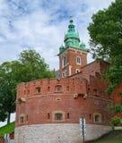Sigismund torn, av Wawel den kungliga slotten, Krakow, Polen Royaltyfri Fotografi