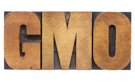 Siglas de la OGM en el tipo de madera Imágenes de archivo libres de regalías