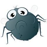 μύγα κινούμενων σχεδίων α&sigma Στοκ φωτογραφία με δικαίωμα ελεύθερης χρήσης