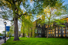 The  Sigmund Samuel Library Building at the University of Toront Royalty Free Stock Images