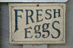 Sign. An old wooden sign advertising fresh eggs Royalty Free Stock Images