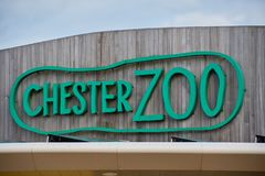 Sign above the entrance to Chester Zoo royalty free stock photos