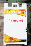 Sign Advertising Primroses Stock Photos