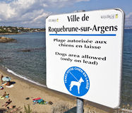 Sign Allowing Dogs on the Beach Royalty Free Stock Image