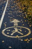 The pedestrian zone in the Park. yellow leaves on the pavement stock images