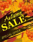 Sign autumn sale. Vertical background with rowan, berries and le Stock Photography