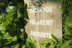 Sign Board : Thank you. You are my favourite text on wooden plan. K, sorrounding by green leaves with shadow of leaves on the board Stock Images