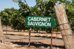 Sign for Cabernet Sauvignon grapes Royalty Free Stock Photography