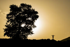 Sign of the cross and the symbol of human. Nature and human;sign of the cross and the symbol of human Stock Photo