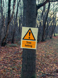 Sign danger tree felling on tree in forest Royalty Free Stock Photo