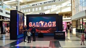 Sign Dior Sauvage. Company signboard Dior Sauvage.
