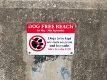 A sign dog free beach on wall penalty dovercourt harwich Stock Photos