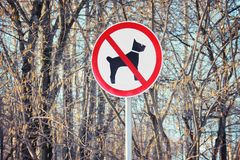Sign prohibiting dog walking. Sign dogs forbidden on background of bare tree trunks Stock Image