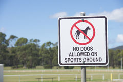 Sign Dogs Prohibited on Sports Ground Royalty Free Stock Photos