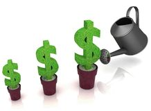 Sign of dollar, growing in a flowerpot Royalty Free Stock Photography