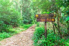 The sign of the fish spa in the woods near a mountain river. lots of greenery. Thailand, road to Chong fah waterfall stock photography
