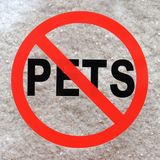 Sign forbidding entry of pets vector illustration