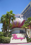 Sign in the front of Flamingo Las Vegas Hotel and Casino Stock Photos