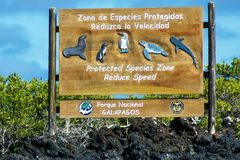 Sign in the Galapagos National Park, Ecuador to protect animals Royalty Free Stock Photos