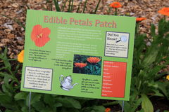 Sign in garden, explaining facts about edible flowers Stock Photography