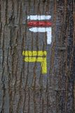Sign for a hiking trail on tree bark. Sign symbol for a hiking trail on tree bark royalty free stock photos