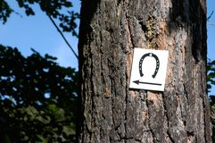Sign: horse road. Sign on a tree to show riders where to go Royalty Free Stock Photo