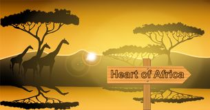 Sign with the inscription heart of Africa, African landscape, Giraffes by the river at sunset among the trees. royalty free illustration