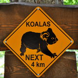 Sign of koalas. Danger sign of koalas on the wood Royalty Free Stock Photography
