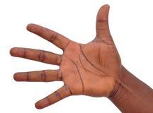 SIGN LANGUAGE Royalty Free Stock Photography