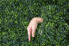 Sign Language Letter Q. Made with hand against green plant background stock photo
