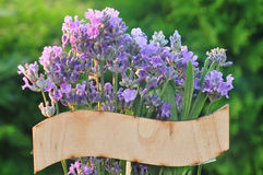 Sign with lavender Stock Image