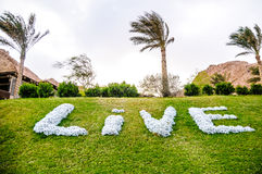 Sign on the lawn. Conceptual optimistic sign on the green grass lawn Royalty Free Stock Photos