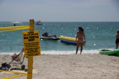 Sign marking sea turtle nest on beach in Sanibel, Florida royalty free stock photos
